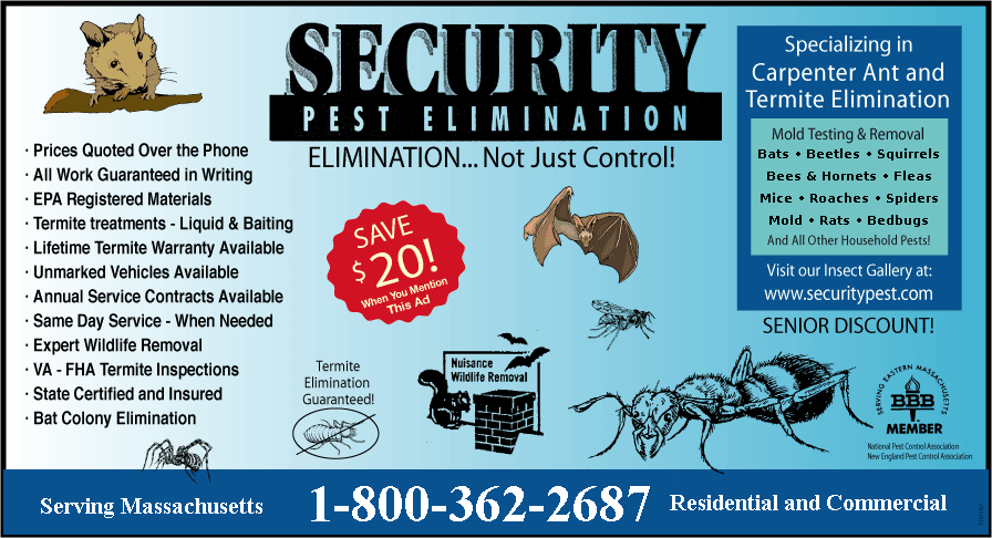 pest-control-exterminators-ant-termite-rodent-bed-bug-control-reading-ma